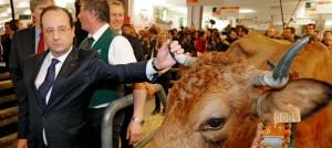 hollande-salon-agriculture